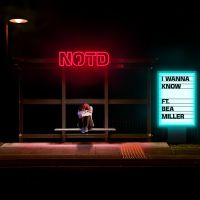 Cover NOTD feat. Bea Miller - I Wanna Know