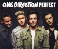Cover One Direction - Perfect