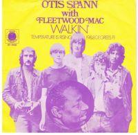 Cover Otis Spann with Fleetwood Mac - Walkin'