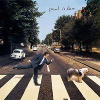 Cover Paul McCartney - Paul Is Live