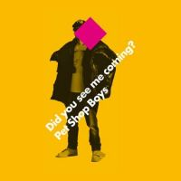 Cover Pet Shop Boys - Did You See Me Coming?