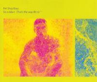 Cover Pet Shop Boys - Se a vida é (That's The Way Life Is)