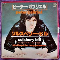Cover Peter Gabriel - Solsbury Hill