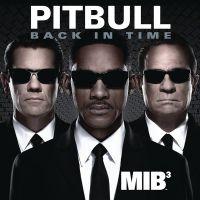 Cover Pitbull - Back In Time
