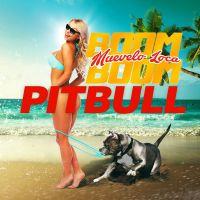 Cover Pitbull - Muévelo loca boom boom