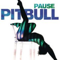 Cover Pitbull - Pause