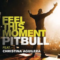 Cover Pitbull feat. Christina Aguilera - Feel This Moment
