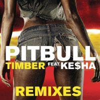 Cover Pitbull feat. Ke$ha - Timber