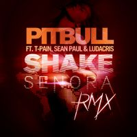 Cover Pitbull feat. T-Pain, Sean Paul & Ludacris - Shake Senora