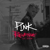 Cover P!nk feat. Eminem - Revenge