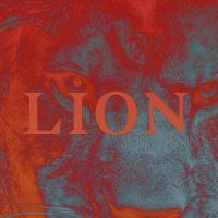Cover PNL - Lion
