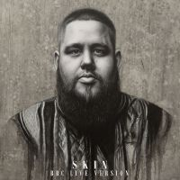 Cover Rag'n'Bone Man - Skin
