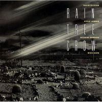 Cover Rain Tree Crow - Rain Tree Crow