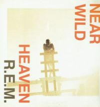 Cover R.E.M. - Near Wild Heaven