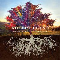 Cover Robert Plant - Digging Deep: Subterranea