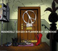 Cover Rosenstolz - Ich geh in Flammen auf