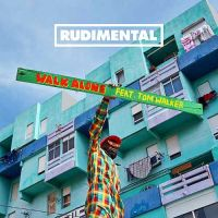 Cover Rudimental feat. Tom Walker - Walk Alone
