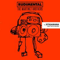 Cover Rudimental & The Martinez Brothers feat. Faith Mussa - Sitigawana