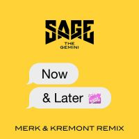 Cover Sage The Gemini - Now & Later
