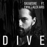 Cover Salvatore Ganacci feat. Enya and Alex Aris - Dive