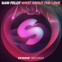 Cover Sam Feldt - What About The Love