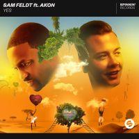 Cover Sam Feldt feat. Akon - Yes