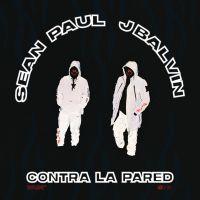 Cover Sean Paul & J Balvin - Contra la pared