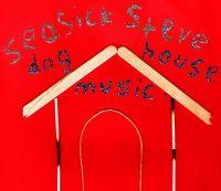 Cover Seasick Steve - Dog House Music