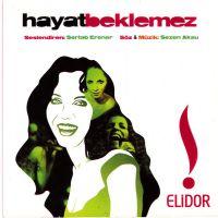 Cover Sertab Erener - Hayat Beklemez