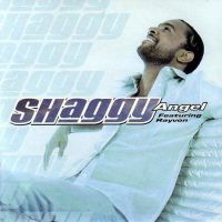 Cover Shaggy feat. Rayvon - Angel
