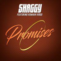 Cover Shaggy feat. Romain Virgo - Promises