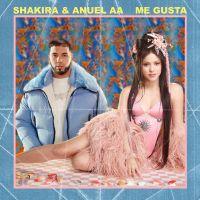 Cover Shakira & Anuel AA - Me gusta