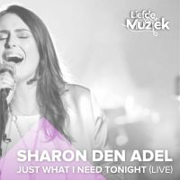 Cover Sharon den Adel - Just What I Need Tonight (Live)