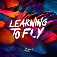 Cover Sheppard - Learning To Fly
