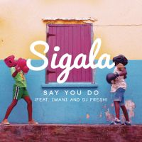 Cover Sigala feat. Imani & DJ Fresh - Say You Do
