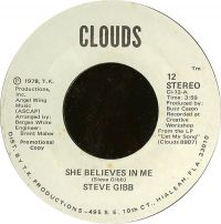 Cover Steve Gibb - She Believes In Me