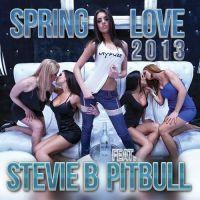 Cover Stevie B feat. Pitbull - Spring Love 2013