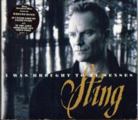 Cover Sting - I Was Brought To My Senses