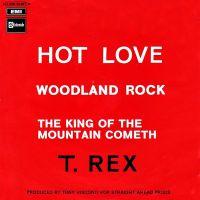 Cover T. Rex - Hot Love
