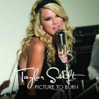 Cover Taylor Swift - Picture To Burn