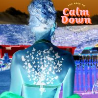 Cover Taylor Swift - You Need To Calm Down