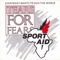 Cover Tears For Fears - Everybody Wants To Run The World