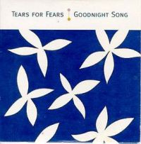 Cover Tears For Fears - Goodnight Song