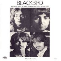 Cover The Beatles - Blackbird