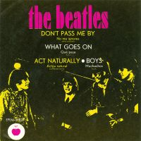 Cover The Beatles - Don't Pass Me By