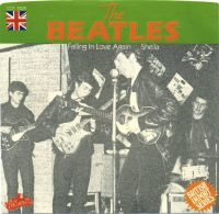 Cover The Beatles - Falling In Love Again