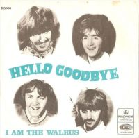 Cover The Beatles - Hello, Good Bye