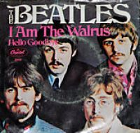 Cover The Beatles - I Am The Walrus