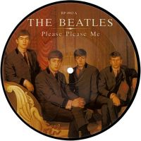 Cover The Beatles - Please, Please Me