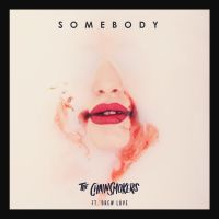 Cover The Chainsmokers feat. Drew Love - Somebody